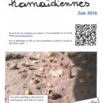 Nouvelles Hamaïdiennes de juin 2016